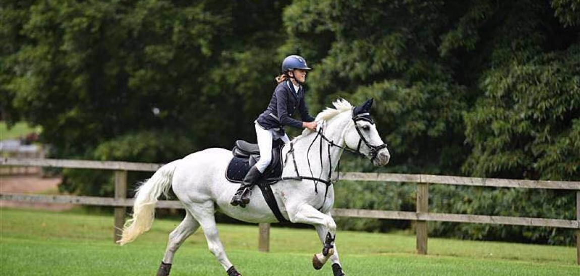 Kaitlyn Wrann – Showjumping Success Story